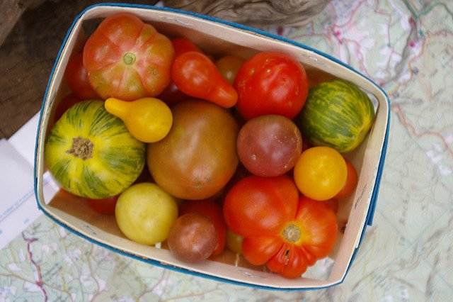 Guest Post: Your Best Source of Nutrients? Real Food!