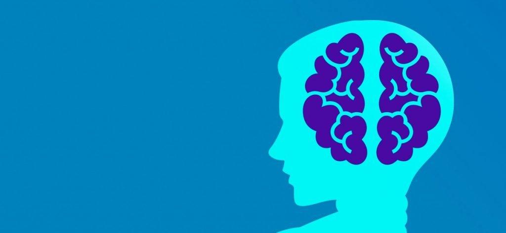 silhouette cut away to show brain