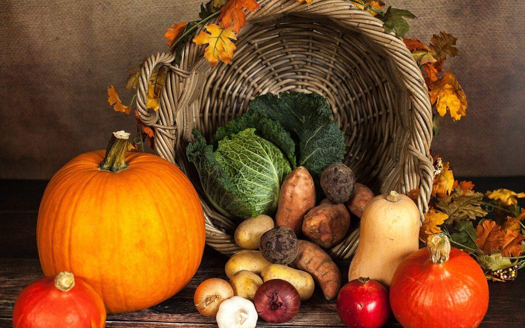 Thanksgiving 2020: Gratitude 9 More Ways