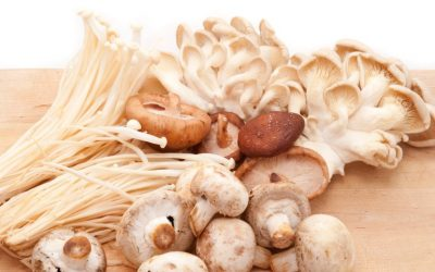 The Benefit of Adding Some Mushrooms to Your Diet